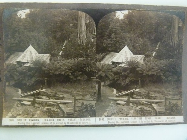 Stereogram from mDHS Collection