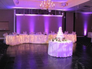 Purple Uplights at an Indiana Wedding