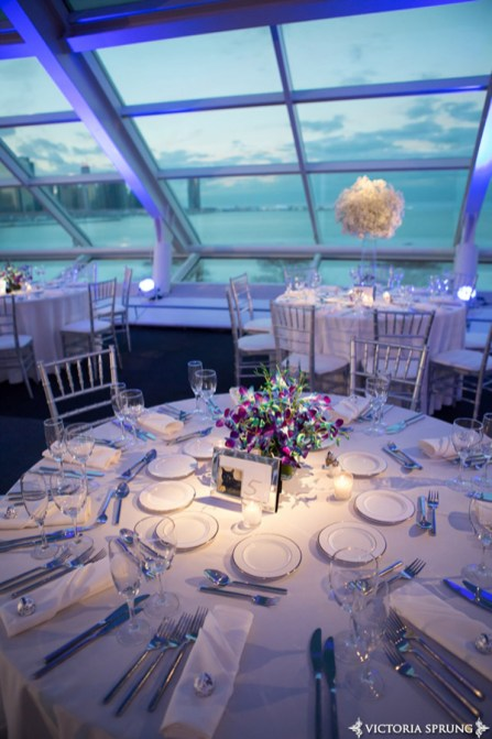 Adler Planetarium Wedding Pin Spot Lighting
