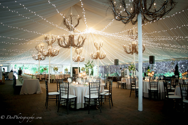 Twinkle Canopy at Galleria Marchetti Wedding 2