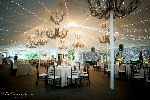 Twinkle Wedding Lighting at Galleria Marchetti