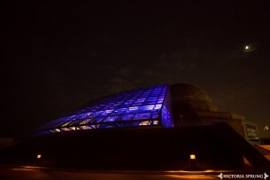 Alana-and-Michael-at-Adler-Planetarium-by-Victoria-Sprung-1303_web