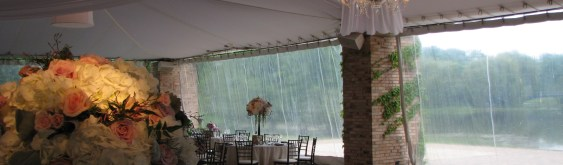 Chicago Botanic Garden Wedding Lighting
