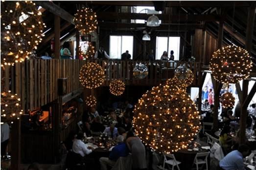 Grapevine ballsHanging Grapevine Balls   MDM Entertainment. Grape Vine Lighting. Home Design Ideas
