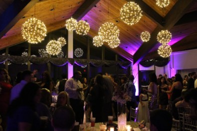 Chicago Wedding Lighting Hanging Grapevine Balls