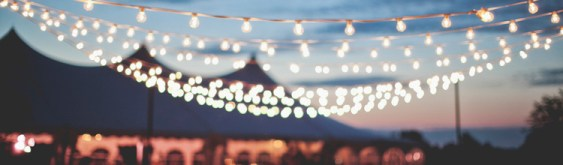 Wedding String Lights
