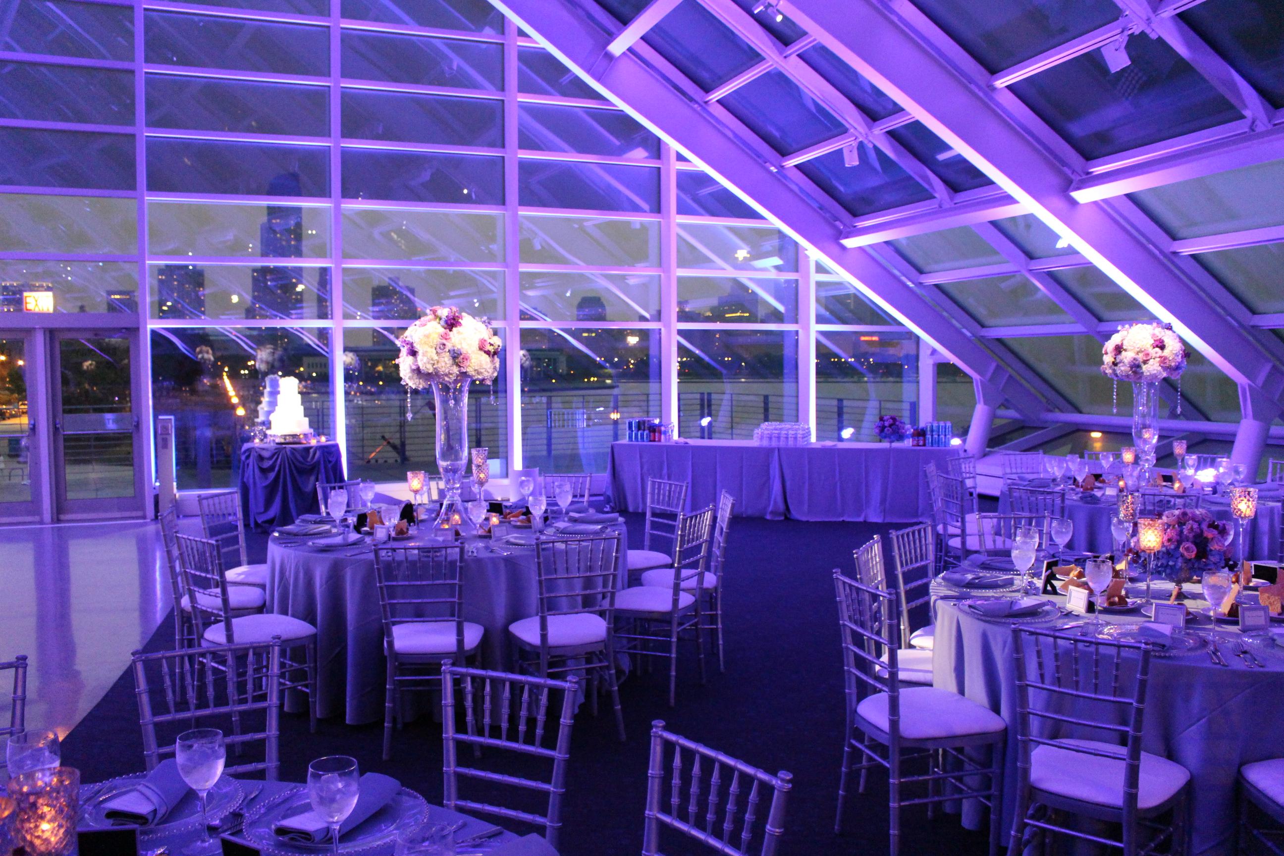 Adler Planetarium Purple Uplighting and Pinspotting - MDM