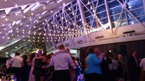 Adler Planetarium Wedding with String Lights