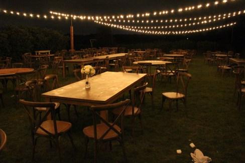 Elawa Farms Wedding with String Lights