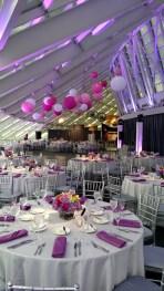 Fuschsia Uplighting and Lanterns at an Adler Planetarium wedding