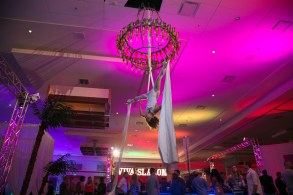 Aerialist for a Vegas Themed Corporate Event