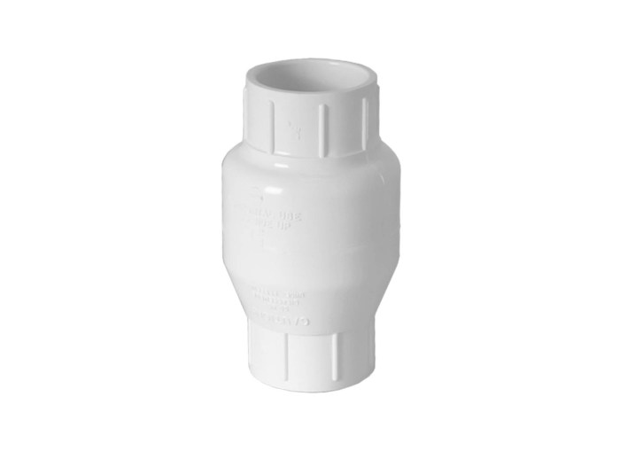 1.5 inch Check Valve upright view