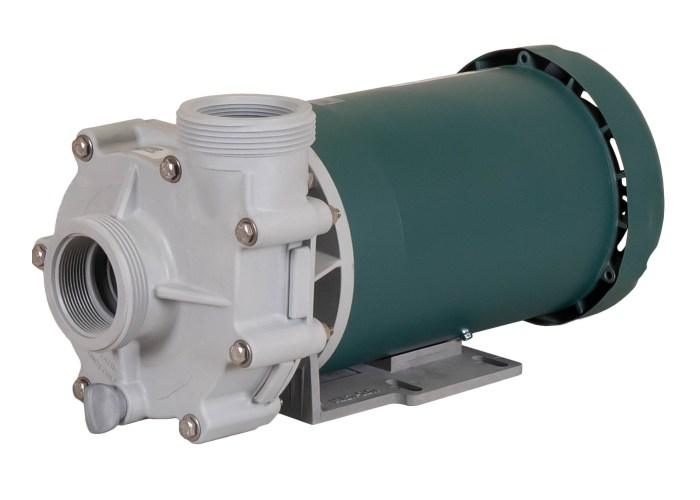 Advance 4000 Pump with green Leeson Motor right angle view