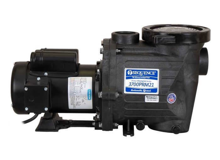 Sequence Primer Champion Pump with black Leeson Motor left side view