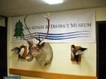 Mackenzie_Museum