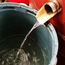 Prima distilare