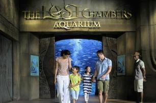 the-lost-chambers-aquarium01