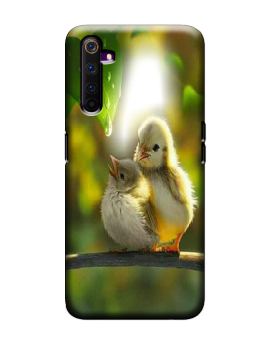 Realme 6 pro Mobile Back Cover (Birds)