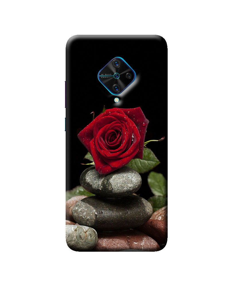 Vivo S1 Pro Mobile back cover (Red Rose)