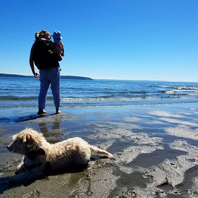Marcella and Leo had a fun adventure. Whidbey Island is beautiful.