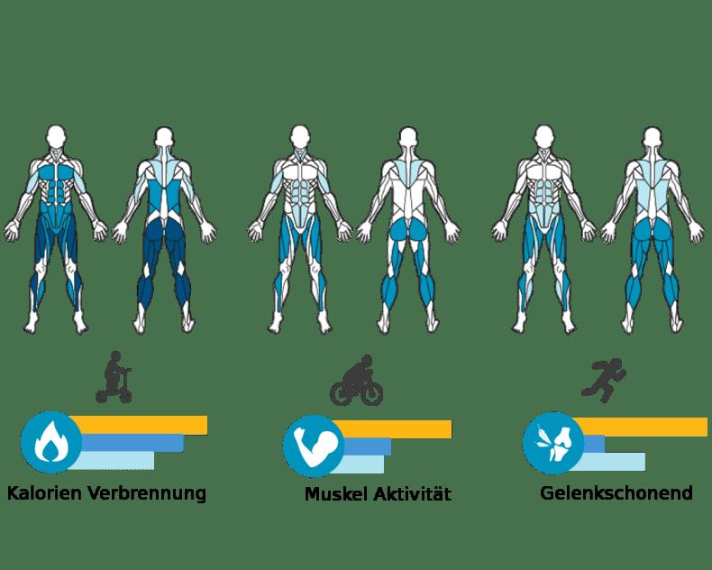 Die Vorteile - Muskelaktivität im Vergleich