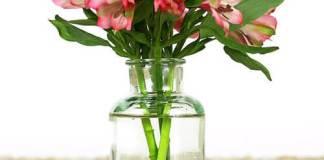 Τι κάνουμε για να μη πέφτει το βάζο με τα λουλούδια