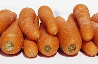 Πως επιλέγω και διατηρώ τα καρότα
