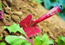 Τι κάνουμε για να μη σκουριάσουν τα εργαλεία του κήπου
