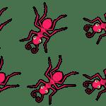 Χωρίς τοξικά, θα διώξεις τα μυρμήγκια