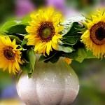 Για να φρεσκάρεις τα λουλούδια