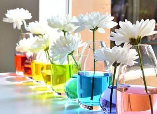 Χρωματιστό νερό στο βάζο