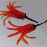 Γαρνιτούρες από κόκκινη πιπεριά