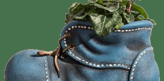 Οι κηπουρικές εργασίες Φεβρουαρίου