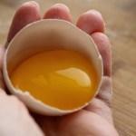 Πως συντηρούμε τον κρόκο του αβγού