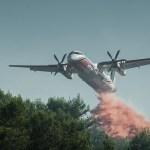 Πυρκαγιά στο δάσος, τι κάνεις