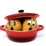 Συντηρούμε τις πατάτες