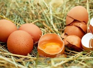 Διατήρησε τα αβγά φρέσκα
