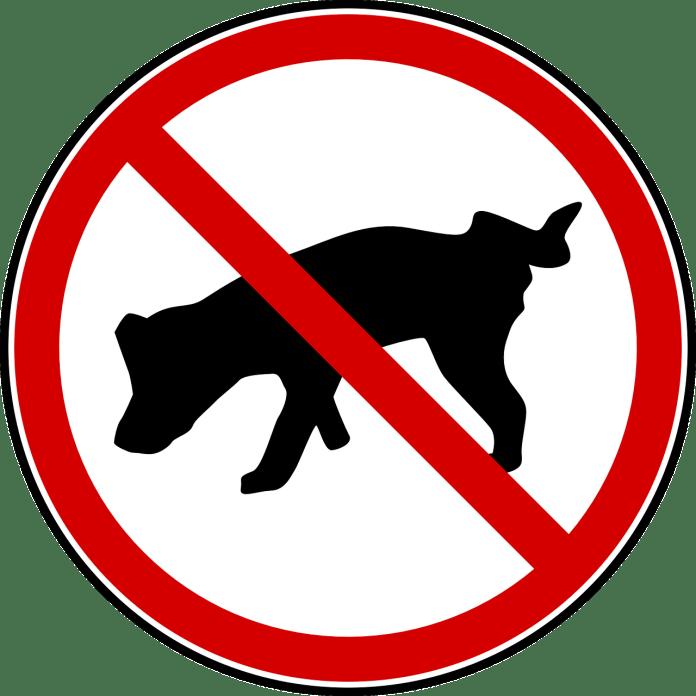 Για να μην αποπατεί εκεί που δεν θέλεις το σκυλί ή το γατί
