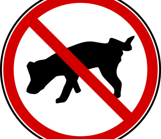 Για να μη κάνει κακά ο σκύλος