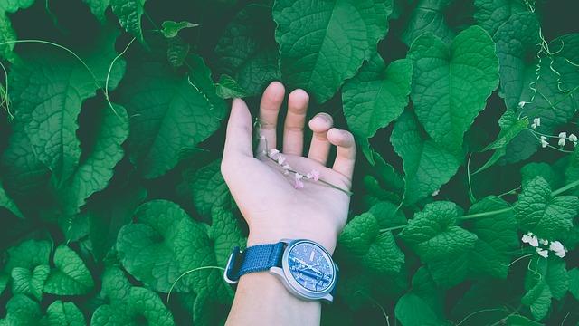 Πως θα αποκτήσετε τα πιο όμορφα και τρυφερά χέρια