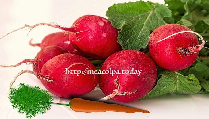 Για να διατηρηθούν τραγανά τα καρότα και τα ραπανάκια