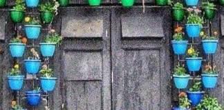 Μια πόρτα με γλάστρες