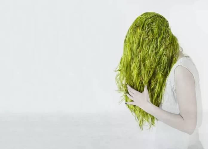 Πράσινα μαλλιά στην πισίνα;