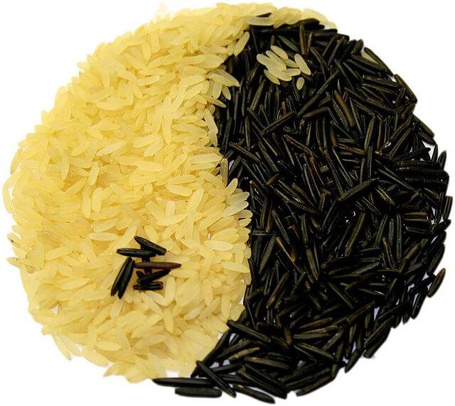Διατροφή και ρύζι