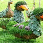 Υπέροχες συνθέσεις με φυτά για τον κήπο και το σπίτι