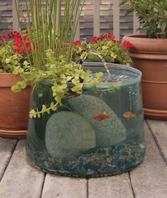 Μικροί νερόκηποι για μέσα και έξω από το σπίτι