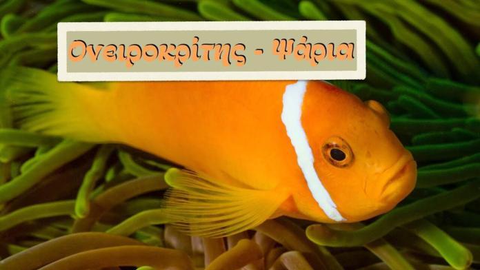 Ονειροκρίτης – Τι σημαίνει αν ονειρευτείς ψάρια;