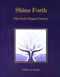 Shine Forth by William Meader