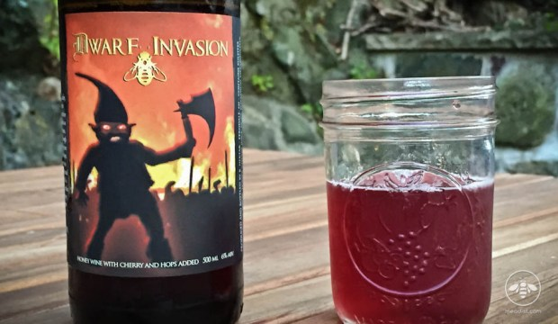 B Nektar Dwarf Invasion Mead Review