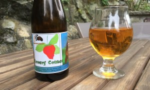 House Bear Brewing Nursery Crimes Review